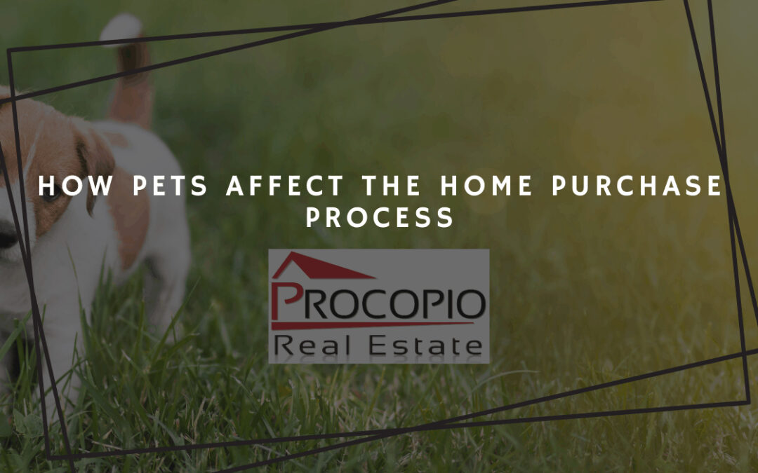 How Pets Affect the Home Purchase Process